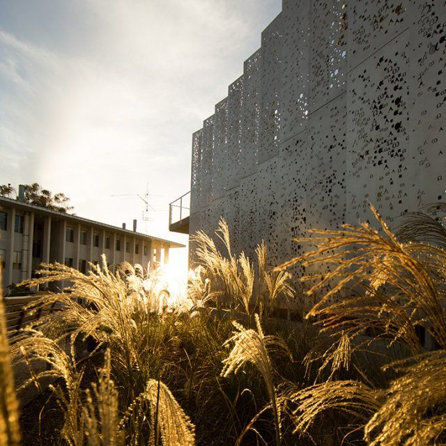 A sunset golden hour view of the PLNU science complex.